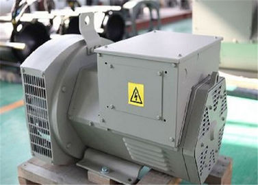 चीन 12kw 15kva Brushless AC Generator With 2 / 3 Pitch Perkins Generator Set Use वितरक
