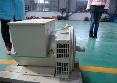चीन 80kw 80kva Effeciency Single Phase AC Generator Self Excited Alternator वितरक